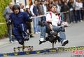 办公椅竞速赛德国举行