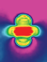 高科技带来奇妙图像 3D老鼠胚胎VS梦幻磁共振