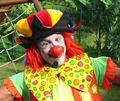 千奇百怪的小丑