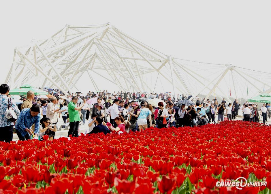 4月28日,2011西安世园会正式开园。