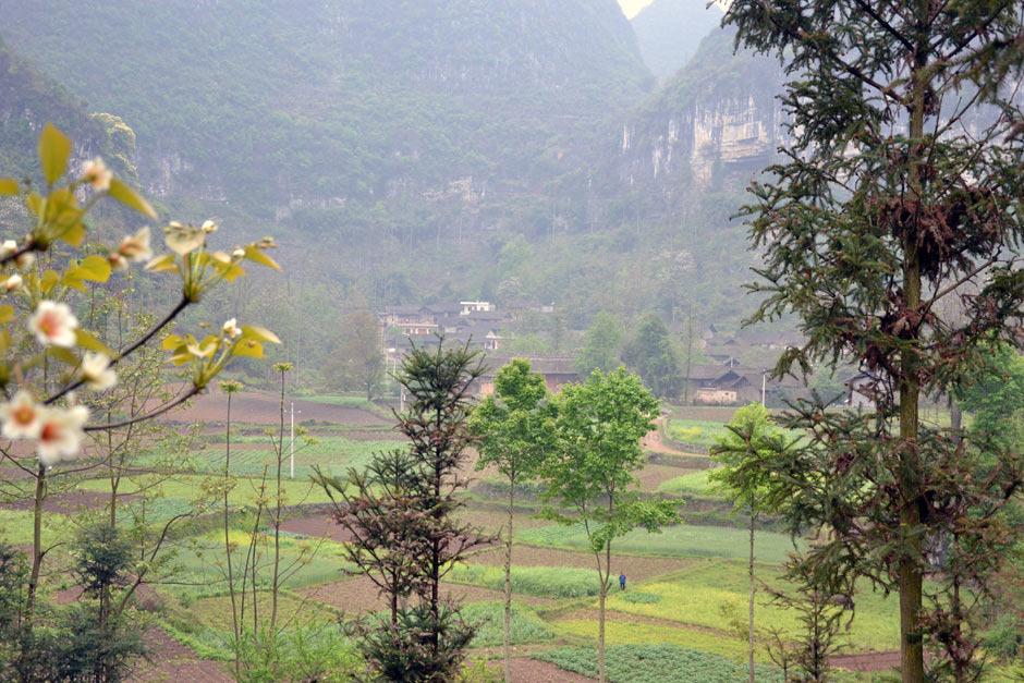罗二妹老人的家乡——贵州省惠水县抵麻乡翁平村中寨组