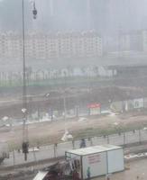 """【""""麦德姆""""台风】网友拍台风临近街景 绿树被吹断路被淹 - 何记茶轩 - 何记茶轩"""