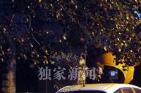 """""""花少团""""聚会刘涛许晴举止亲密 破不和传闻 - 何记茶轩 - 何记茶轩"""