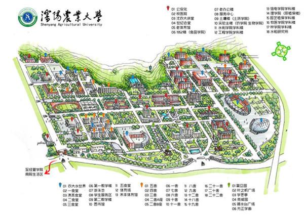 沈阳农大学长手绘地图迎接新生