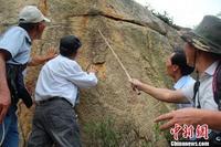 漳州东山发现史前岩画 内容与生殖崇拜有关 - 何记茶轩-金霏霏 - 何记茶轩-金霏霏