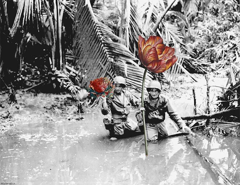 如果战争是朵花 知乎精选 第4张