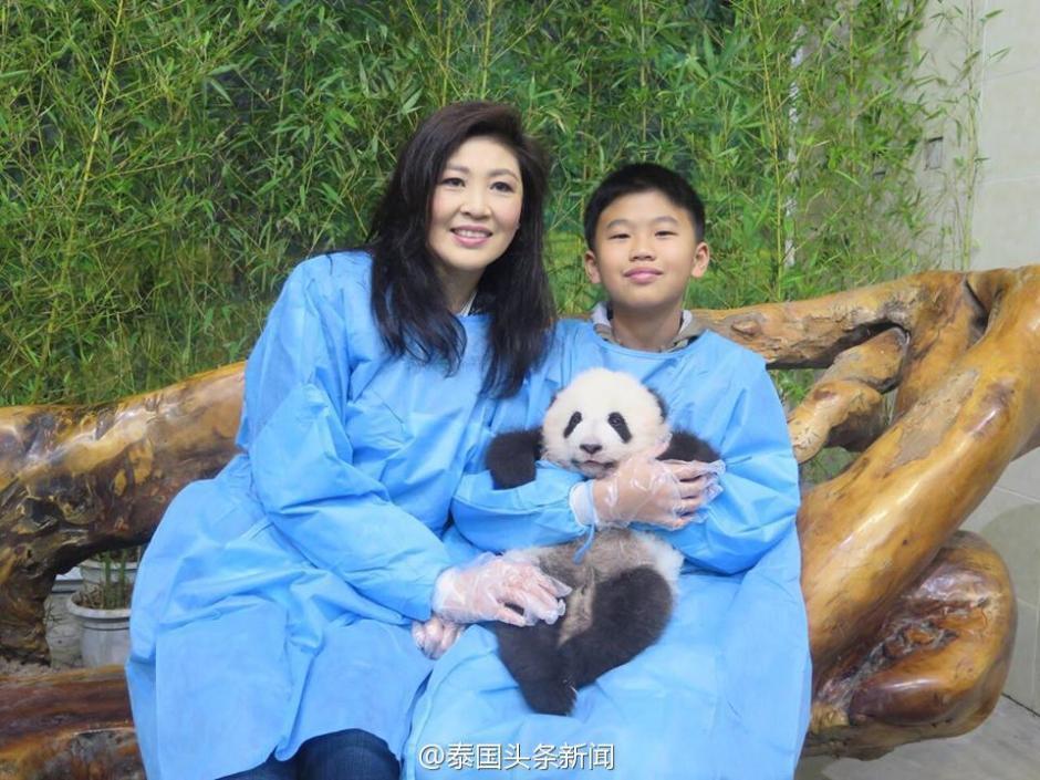 组图:英拉他信造访成都 与大熊猫亲密接触 - 暮色苍茫 - 赵破奴