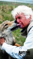 人关爱动物的感人故事