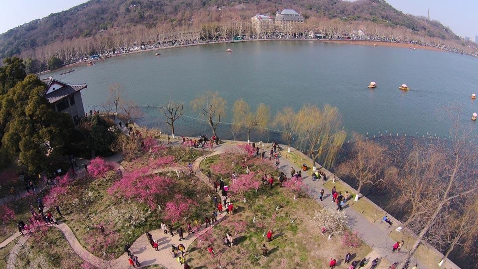 西湖迎春天 - L .H - hgx381 的博客