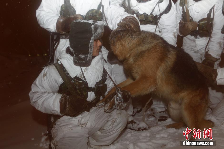 黑河哨兵冒雪巡逻 抱军犬给其取暖 - 海阔山遥 - .