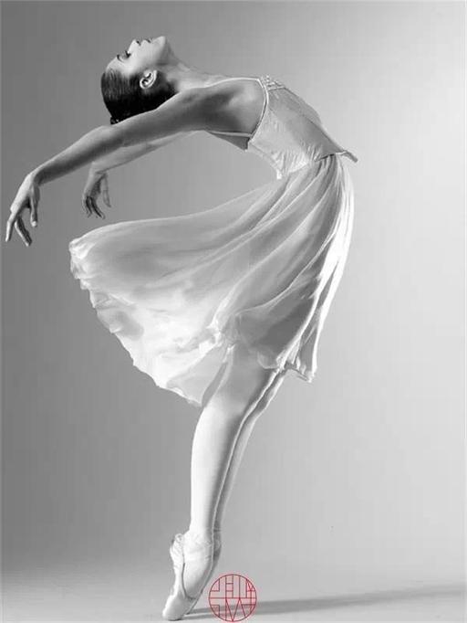 人体的曲线力量与美 - 云水禅心 - 云水禅心