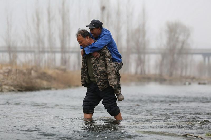 河北两名残障男子互为手眼 栽树万棵荒滩变密林 - 暮色苍茫 - 赵破奴