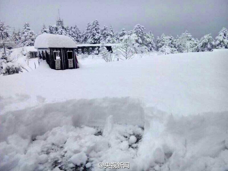 四川峨眉山景区降下近7年来最大一场雪2015.3.26 - fpdlgswmx - fpdlgswmx的博客