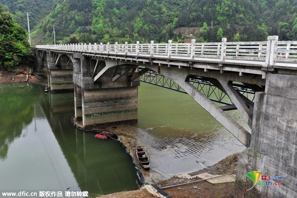 长江支流甲藻富集 江面犹如漂浮 油污带