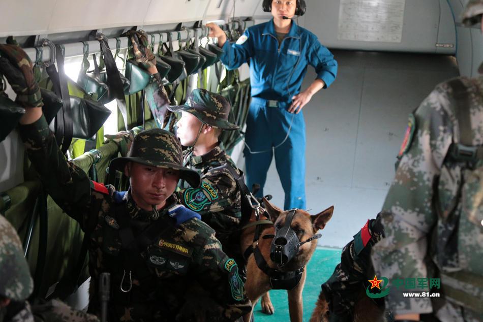 组图:中国特种部队军犬首次参加机降演练 - 海阔山遥 - .