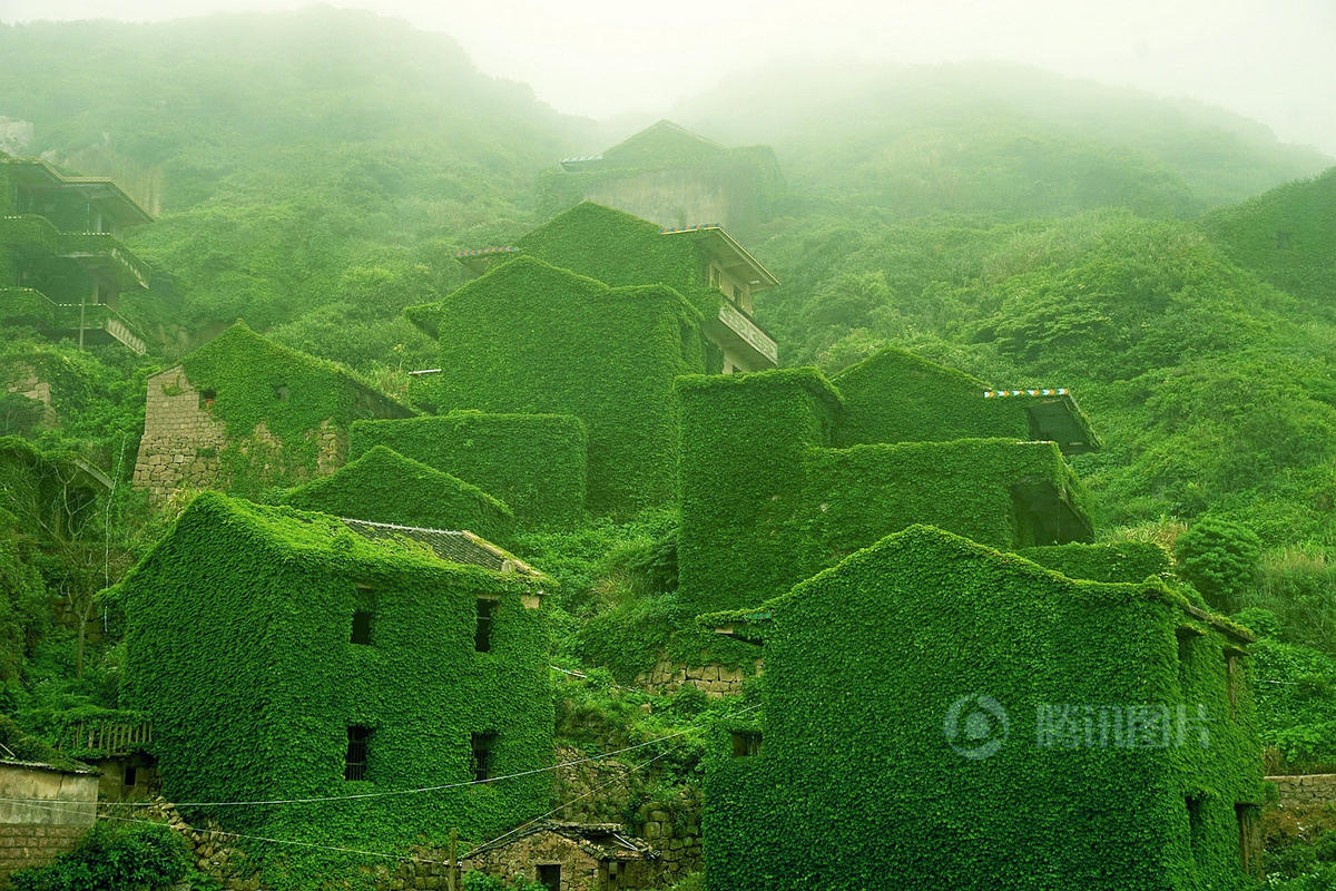 在这个位于浙江舟山嵊泗嵊山岛后陀湾的地方,村落荒芜,许多无人居住的