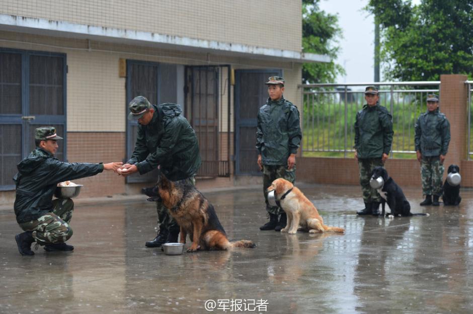 韦东海宜州区龙头乡党委书记