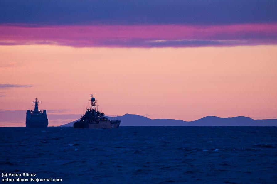 """菲律宾将接回日本""""钻石公主号""""邮轮上菲籍船员"""