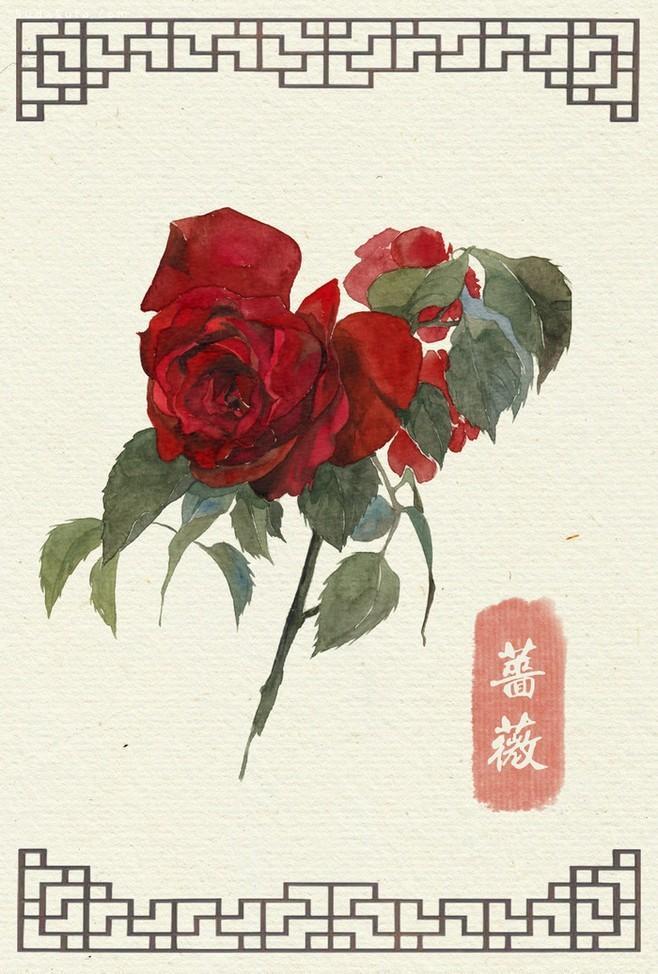 唯美手绘花