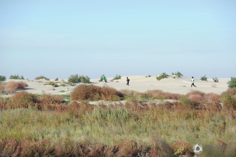 唐山湾的环境相当特别高清图片