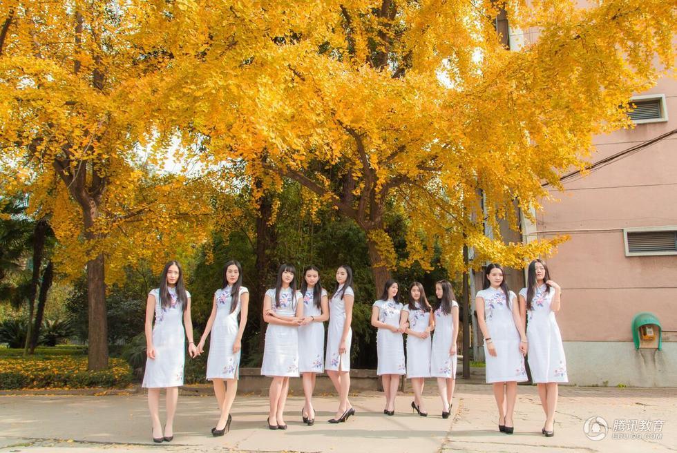 高校礼仪队女生拍旗袍写真 古典唯美2015.12.03 - fpdlgswmx - fpdlgswmx的博客