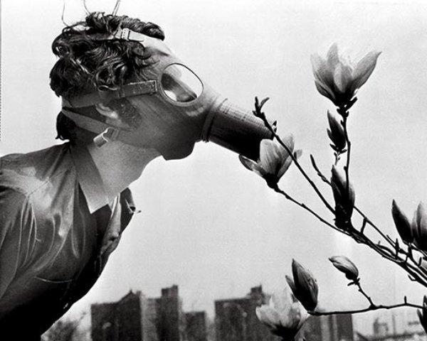 1970年美国人口_美国人拍1970年代的中国