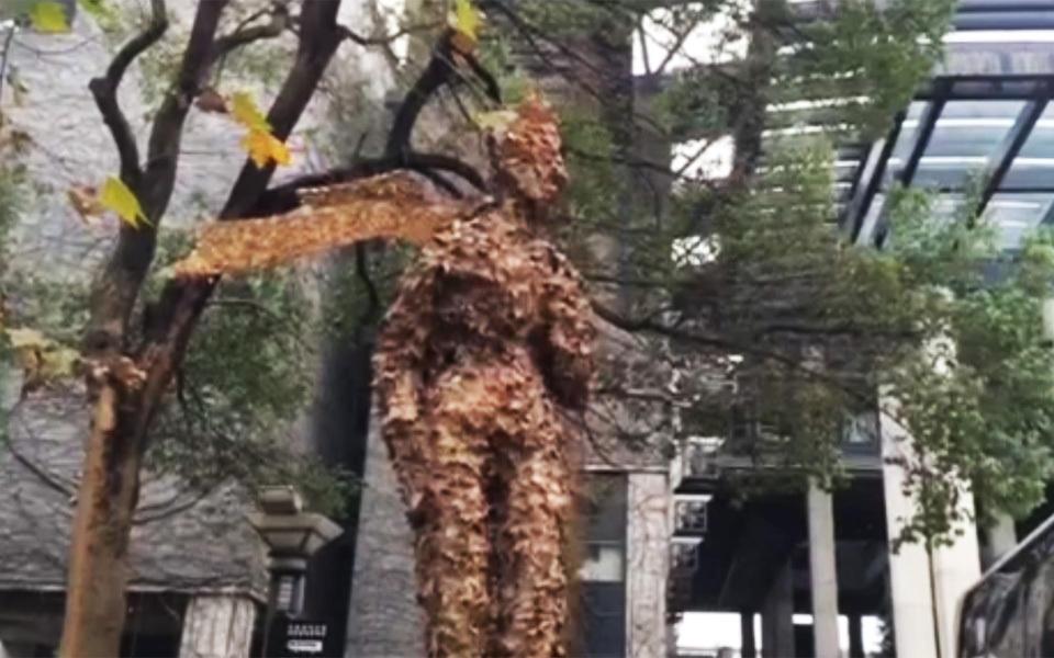 """组图:杭州南山路现""""长腿欧巴"""" 用落叶堆成_新闻_腾讯网图片"""