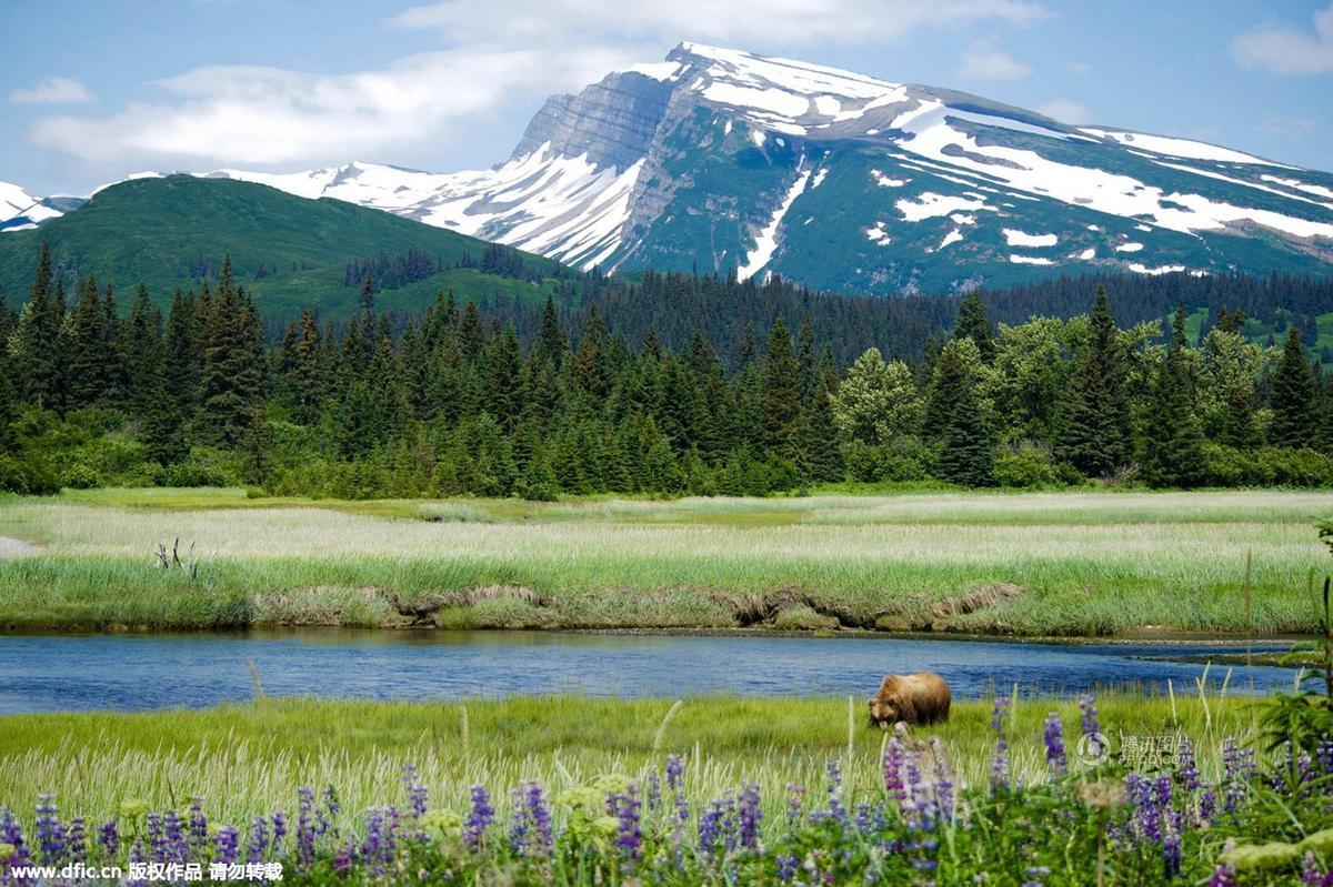 美国内政部发布年度最佳风光照片 - 海阔山遥 - .