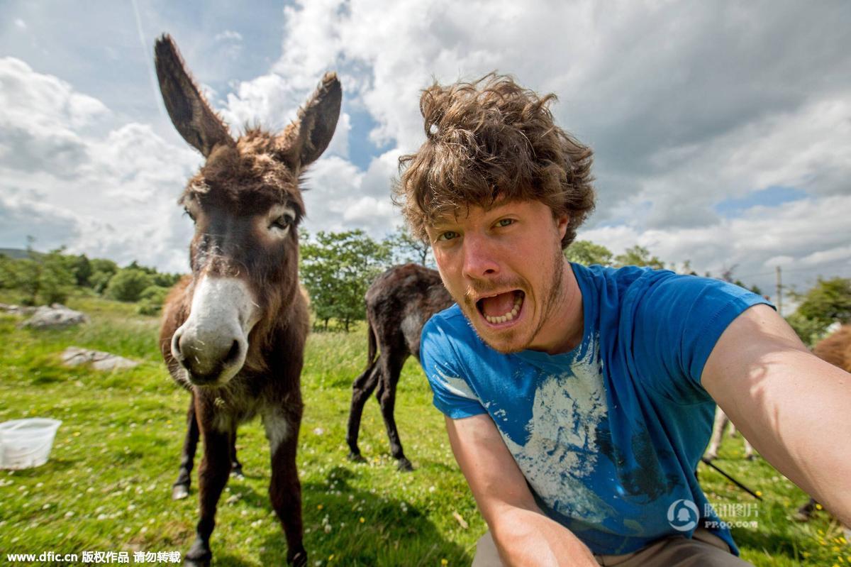 """爱尔兰小伙与各种动物""""微笑""""合影"""
