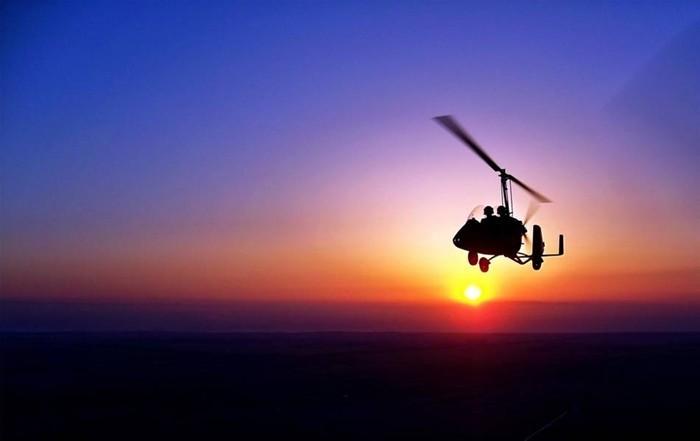 自由飞翔网