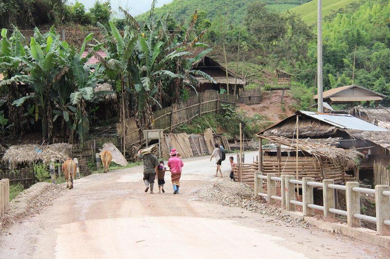 苗族是老挝一个人口较多的山地民族,约占老挝人口的7%,主要分布