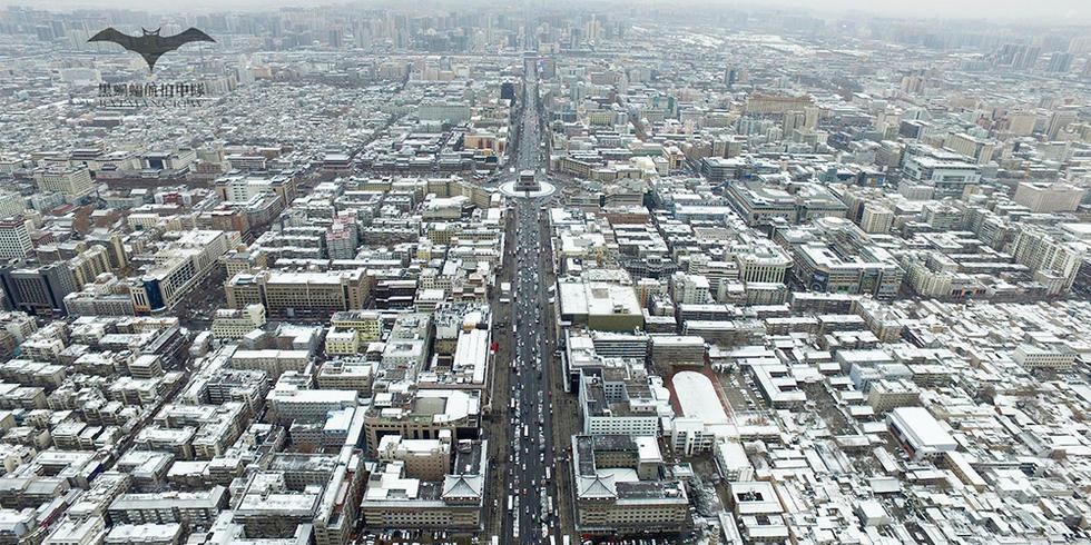 一下雪西安就变成了长安!西安年度最美雪景2016.2.3 - fpdlgswmx - fpdlgswmx的博客