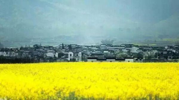 程序员夫妻买下山村老宅 自己打造田园生活 - 海阔山遥 - .