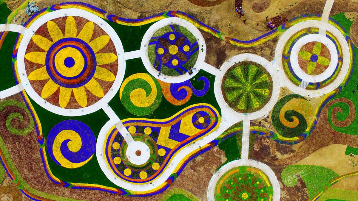 的彩色花坛以圆形状排列,色彩交织犹如巨型的3D彩色画,在大地构