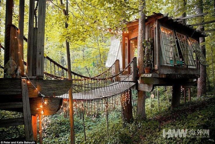 当你还在买房 他们已经住到了树上 - 海阔山遥 - .