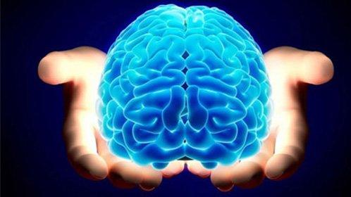 大脑的光控开关