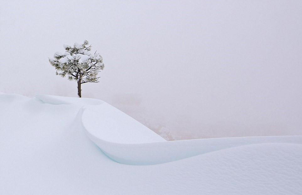 国家地理摄影大赛绝美景色 - 海阔山遥 - .