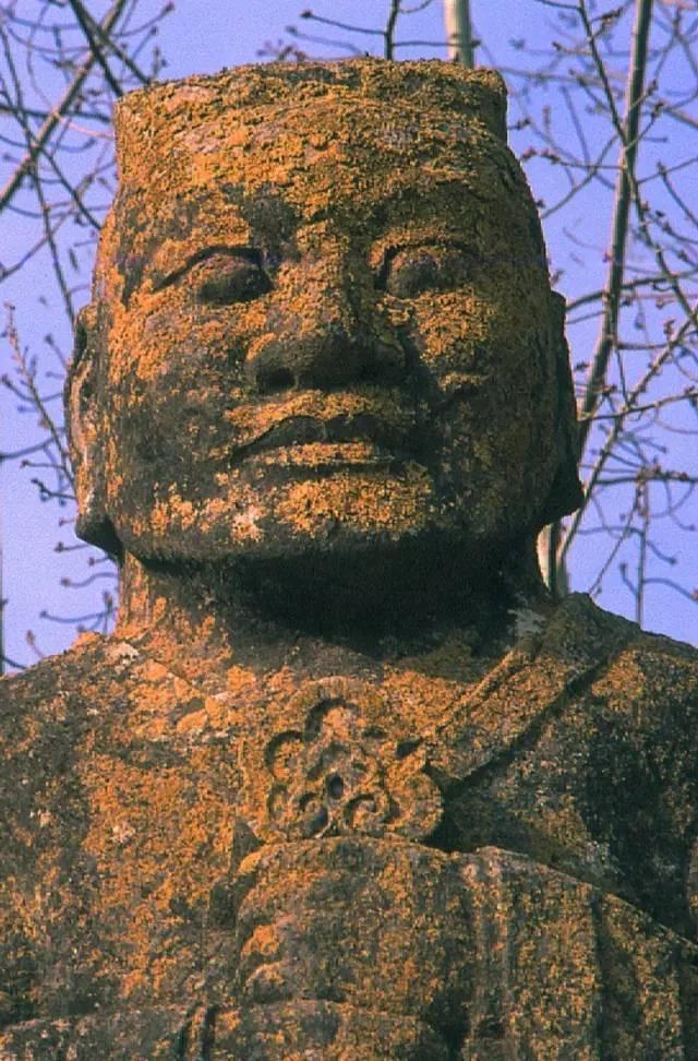 建主义的千年尘埃,让我们看到了纯洁的中国特色的文化,要感谢他图片