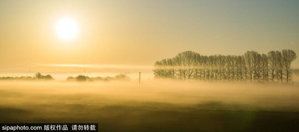 剑桥清晨沼泽地似爱丽丝仙境 - 海阔山遥 - .
