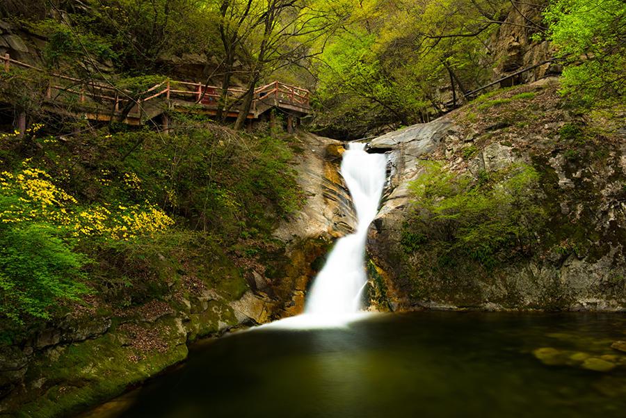 西安旅游集团主办,户县森林旅游景区管理局、西安秦岭朱雀太平旅