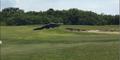 巨鳄漫步球场