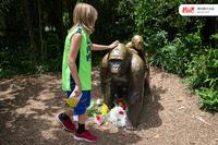 动物园惊魂,该救谁?