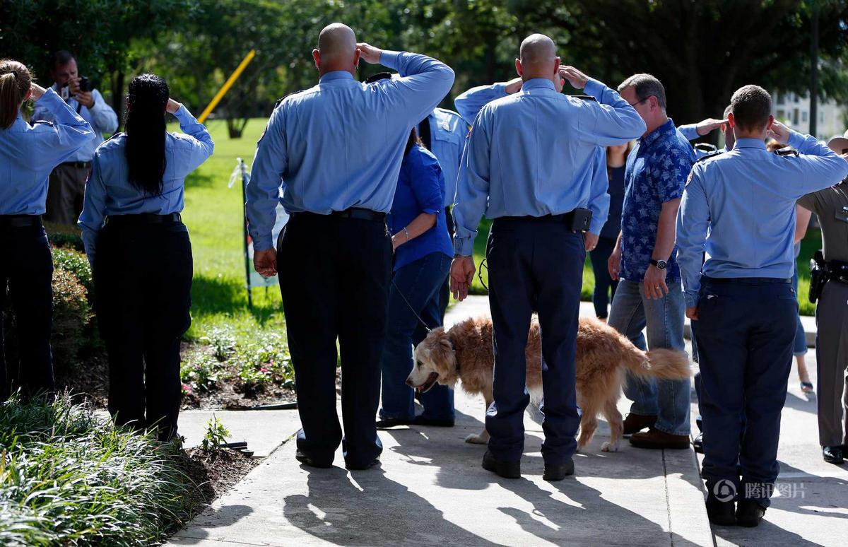 9·11 事件最后一只搜救犬被安乐死 警员列队敬礼