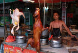 全球抵制广西狗肉节 反助长当地消费