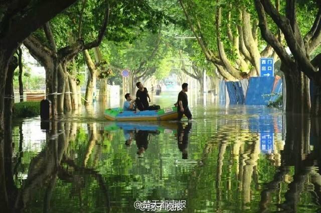 """暴雨过后 南理工的""""奇幻森林"""" - 海阔山遥 - ."""