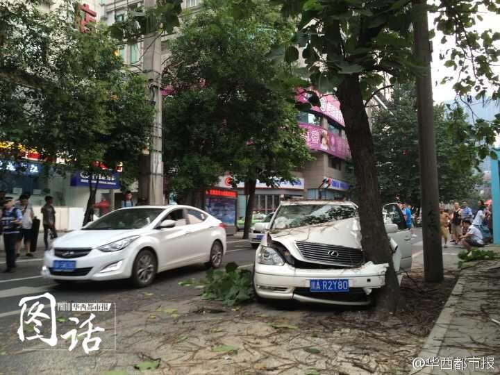 车祸.一辆川A凌志车突然撞上街边的泡桐树,安全气囊弹开,驾驶图片