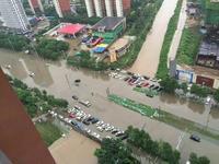 辽宁全省昨日转移9万余人 局地降水量超150mm - 人间正道是苍桑 - KING的博客