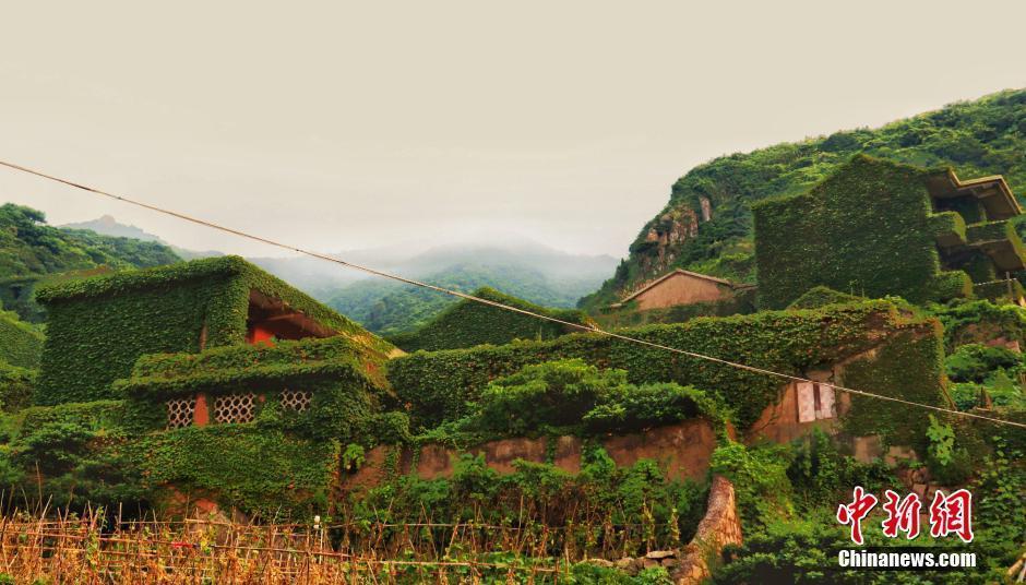 """中国最美丽的""""无人村""""浙江舟山海岛 - 海阔山遥 - ."""