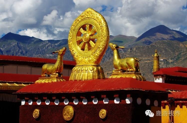 客介绍大昭寺的历史和文物,确实值得一听.(图源:鹿游视界微信图片