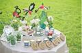 清新文艺的草坪婚礼